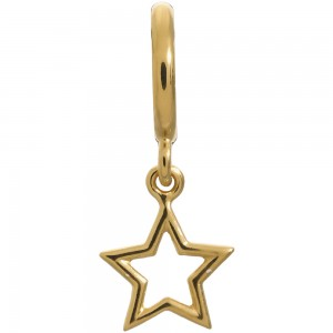Endless Jewelry Star Gold Plated Charm 53204