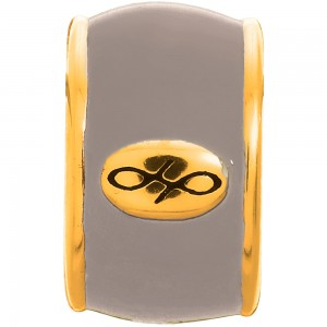Endless Jewelry Silver Endless Enamel Gold Plated Charm 52100-1