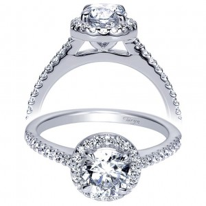 Taryn 14k White Gold Round Halo Engagement Ring TE6418W44JJ