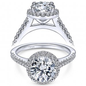 Taryn 14k White Gold Round Halo Engagement Ring TE6420W44JJ