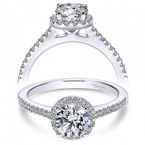 Taryn 14k White Gold Round Halo Engagement Ring TE6558W44JJ