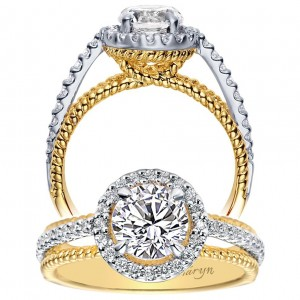 Taryn 14k Yellow/White Gold Round Halo Engagement Ring TE5366M43JJ