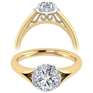 Taryn 14k Yellow/White Gold Round Halo Engagement Ring TE7807M44JJ