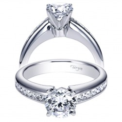 Taryn 14k White Gold Round Straight Engagement Ring TE3987W44JJ